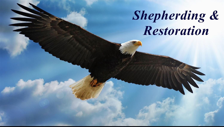 Shepherding & Restoration