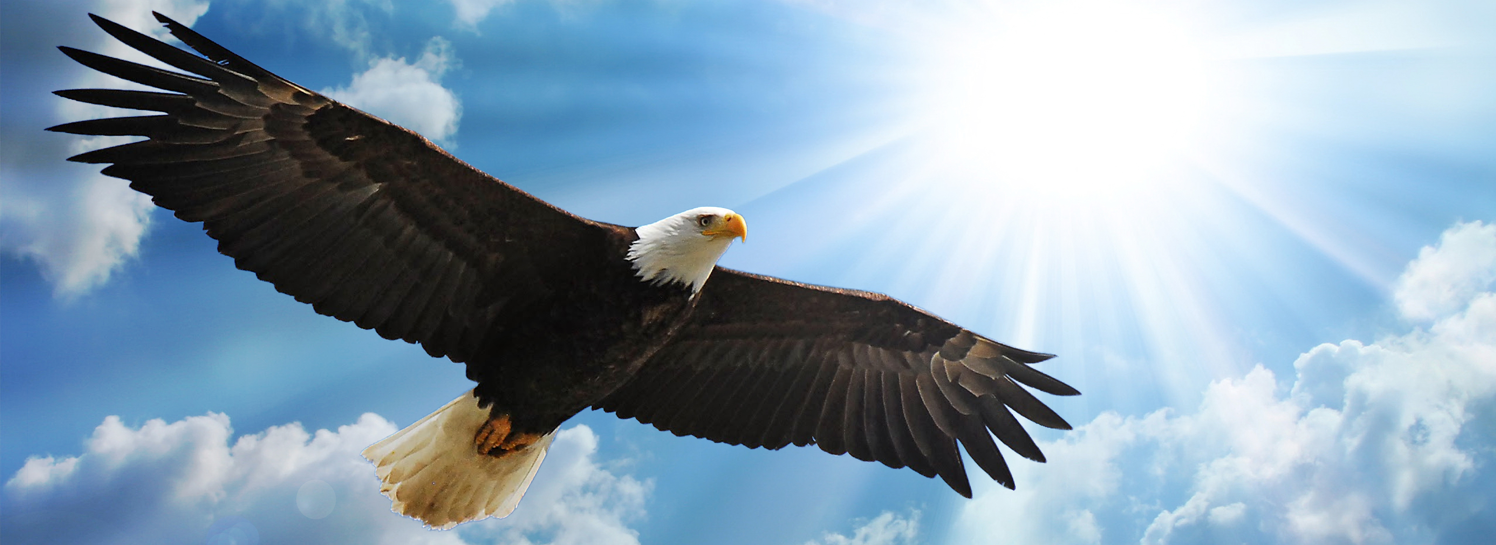 Eagle's Wings Ministry